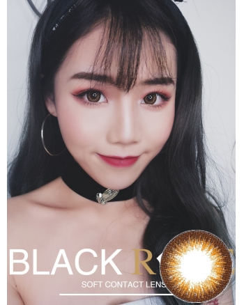 Dreamcon BLACKROSE 公主棕日拋系列